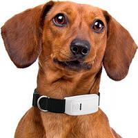 GPS ошейник TKStar TK-909 для животных