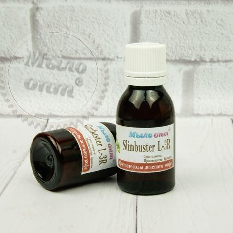 Slimbuster L-3R – фитостеролы зеленого кофе, 20 грамм