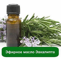 Эфирное масло Эвкалипта, 10 мл