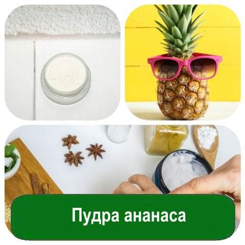 Пудра ананаса, 10 грамм