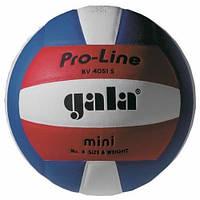 Мяч волейбольный Gala Pro-Line р. 4 (BV4051SAE)