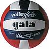 Мяч волейбольный Gala Training р. 5 (BV5241SBE)