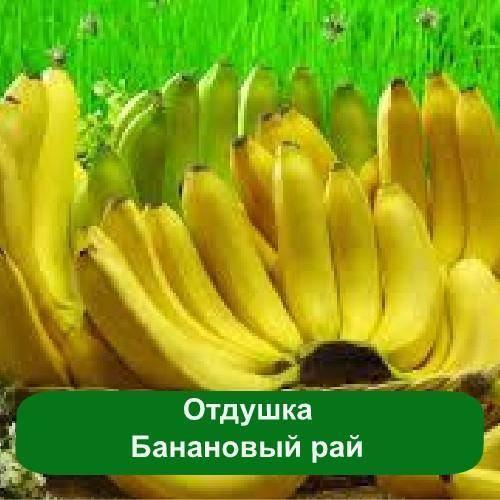 Отдушка Банановый рай, 50 мл