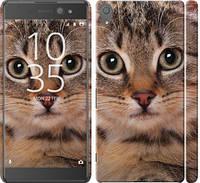 "Чехол на Sony Xperia XA Ultra Dual F3212 Полосатый котик ""2978c-391-19913"""