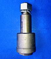 Палець дишла причепа Камаз в зборі з гайкою і втулкою L-170 мм, фото 1