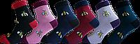 """Жіночі шкарпетки жук """"lomani"""""""