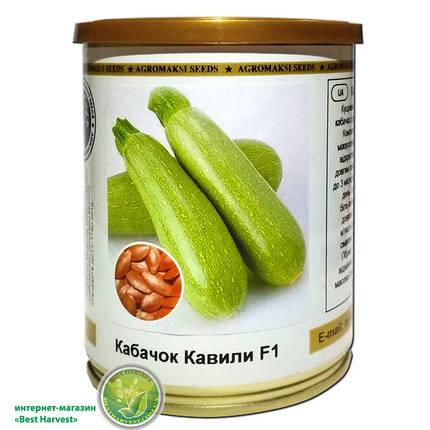 Семена кабачка «Кавили F1» 100 г, инкрустированные (Агромакси), фото 2