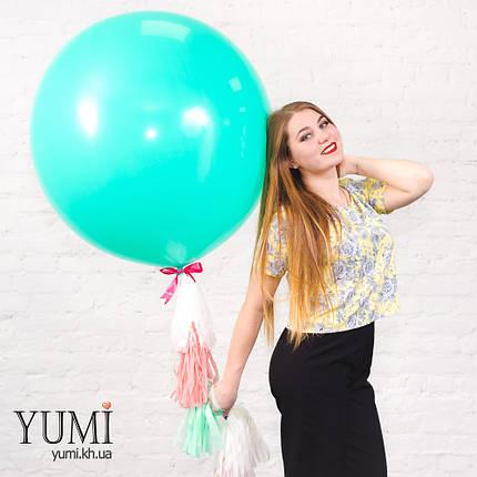 Стильный гелиевый шар с гирляндой тассел на праздник, фото 2