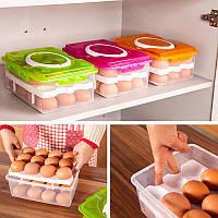 Органайзер для переноски яиц (24 шт) оранжевый