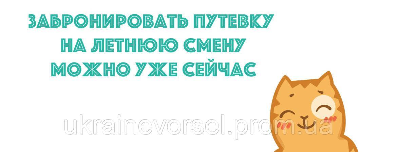 """Летний Детский Оздоровительный Лагерь """"Украиночка"""""""