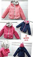 Куртка для девочек оптом, Setty Koop, 4-12 лет,  № АР1605
