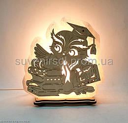 Соляна лампа Сова на книзі