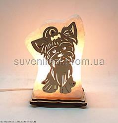 Соляна лампа Собачка маленька