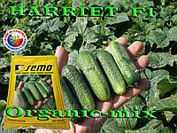 Хариет F1 / Harriet F1 , ТМ SEMO (Чехия), 1000 семян