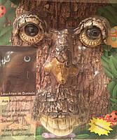 Декор для дерева - лицо дерева со светящимися глазами.