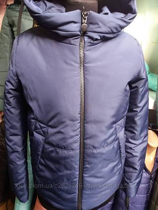 cbab8cc5ca5 Женская стильная куртка весна   осень на синтепоне  продажа