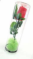 Подарок из махрового полотенца Роза в тубусе Domiko