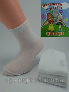 Носки детские 12-14 (19-22 обувь)