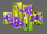 Модульная картина цветы Ирис 120*93 см Код: 384.4к.120