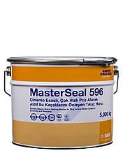 Гидропломба, цементный ремонтный раствор для остановки активной течи воды MasterSeal® 596