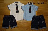 Комплекты на мальчика в оптом, F&D, 12-36 рр.