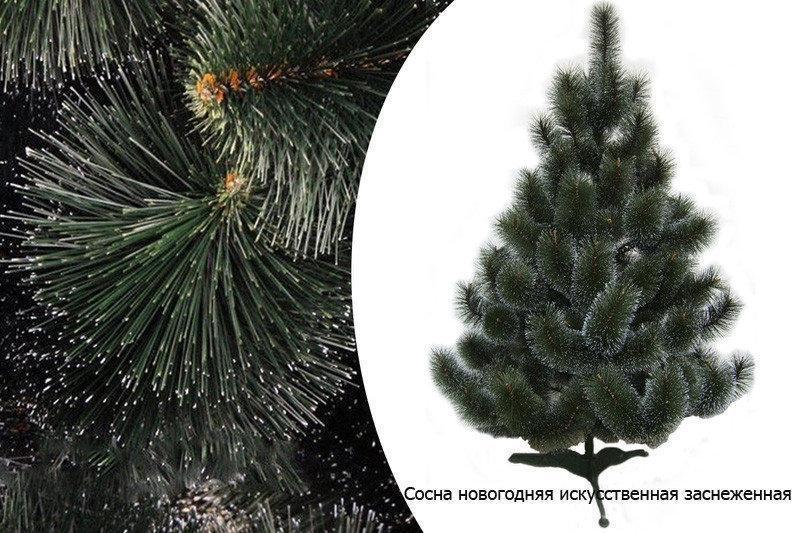 🎄 Сосна новогодняя искусственная с белыми кончиками 2.1 м.