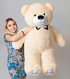 Плюшевий ведмедик Mister Medved Бежевий 130 см, фото 2