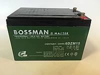 Аккумуляторы к электровелосипедам BOSSMAN 6DZM15