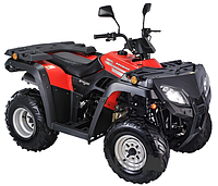 Квадроцикл Skybike Expert 250 New-2015