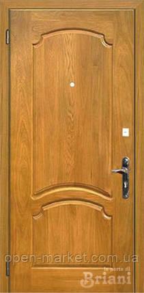 Модель 107-Alveri двери Бриани в Николаеве, фото 2