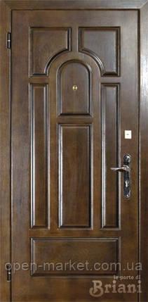 Модель 123-Pavioli двери Бриани в Николаеве, фото 2