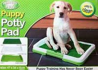 Домашний туалет для животных Potty Pad For Dogs, Поти Пед, туалет для собак