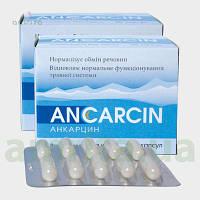 Анкарцин 20 кап..Крепкий Иммунитет.Онкология.