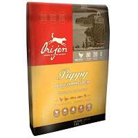 Orijen Puppy 6 кг - сухий корм для цуценят малих і середніх порід.