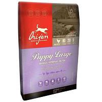 ORIJEN Puppy Large 11,4 кг- корм для щенков крупных пород