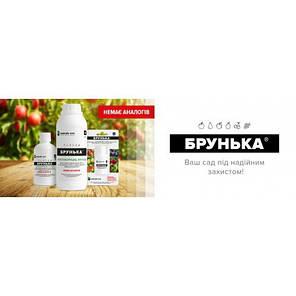 Инсектоакарицид+фунгицид Брунька 1 л - эффективное средство для обработки сада от вредителей и болезней!, фото 2