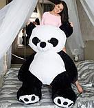 Іграшка панда, плюшева панда. Ведмідь панда 200 см, фото 2