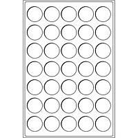 TABCCHAMPBL Лоток для монет до 37мм или до 31мм в капсулах