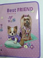 "Папка для тетрадей B-5 на змейке (картон)  №13662 ""Best friend"" Kidis"