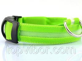 🔝 Светящийся ошейник для собак, аккумуляторный, светодиодный, с USB зарядкой, размер XL: 52 см. | 🎁%🚚