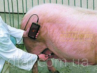 Тестер (детектор) Draminski для определения супоростности свиноматок