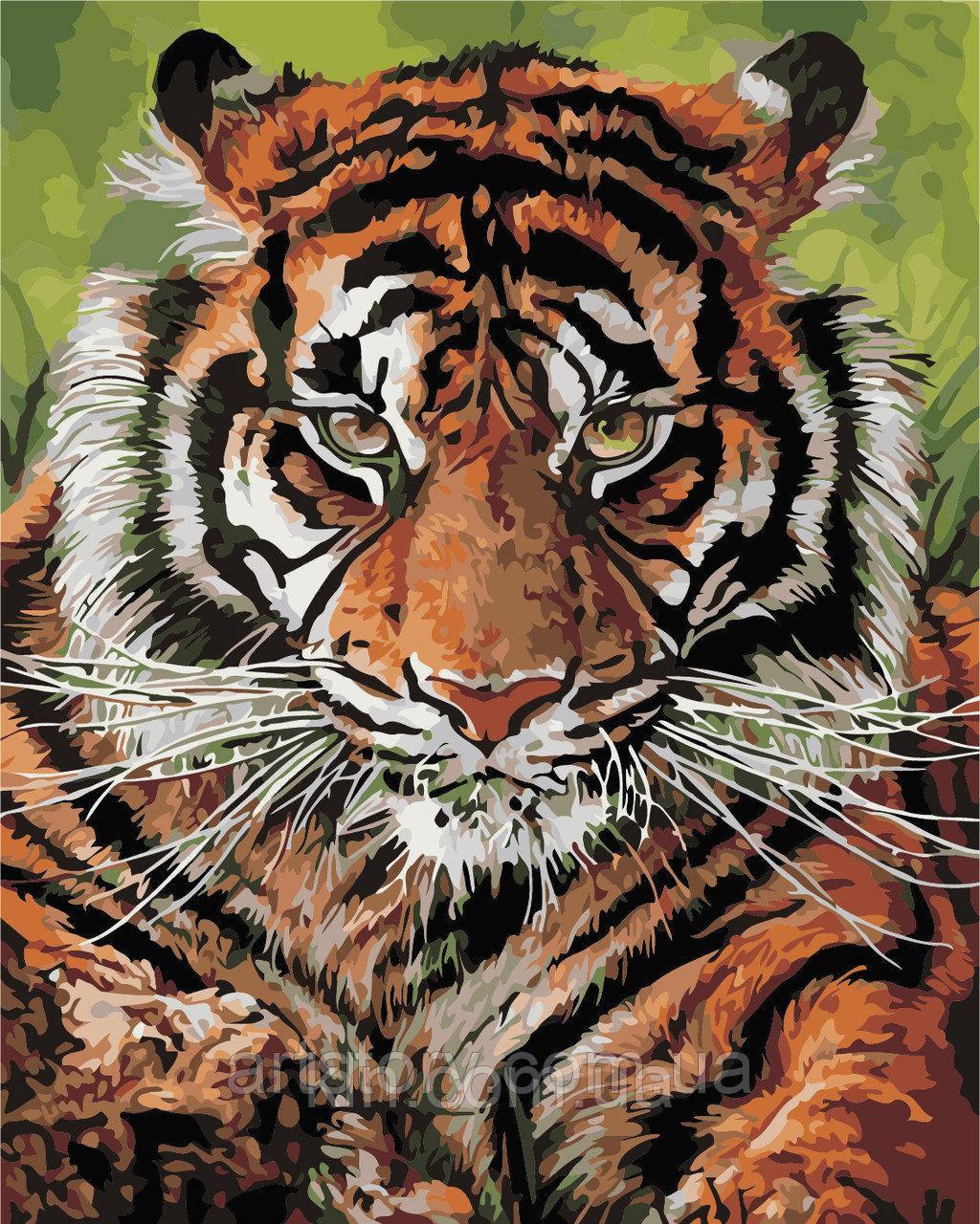 Картина по номерам ArtStory Взгляд тигра 40 х 50 см (арт. AS0393)