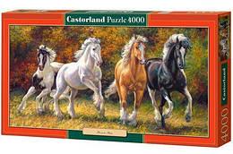 """Пазлы """"Скакуны"""" , 4000 элементов (животные, лошадь, конь, лошади)"""