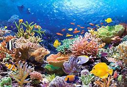 """Пазлы """"Подводный мир"""", 1000 элементов (море, животные, рыбки)"""