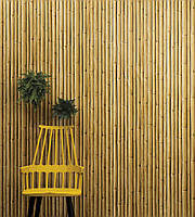 "Обои ""Bamboo Buzz"""