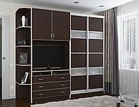 Шкаф купе в гостинную с ТВ пеналом и угловым сегментом