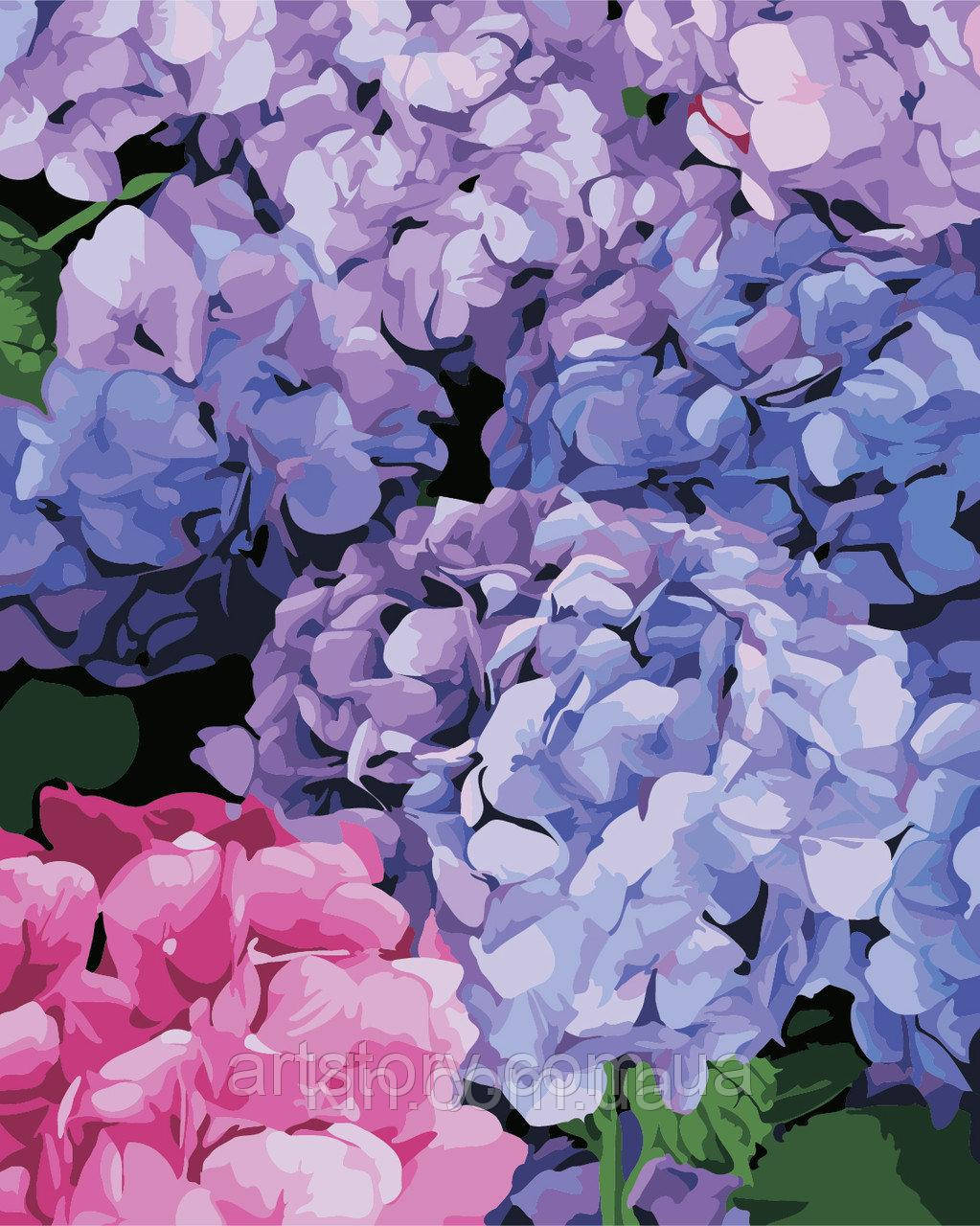 Картина за номерами ArtStory Квітуча гортензія 40 х 50 см (арт. AS0334)