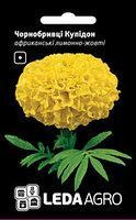 Бархатцы Купидон африканские лимонно-желтые 0.2г