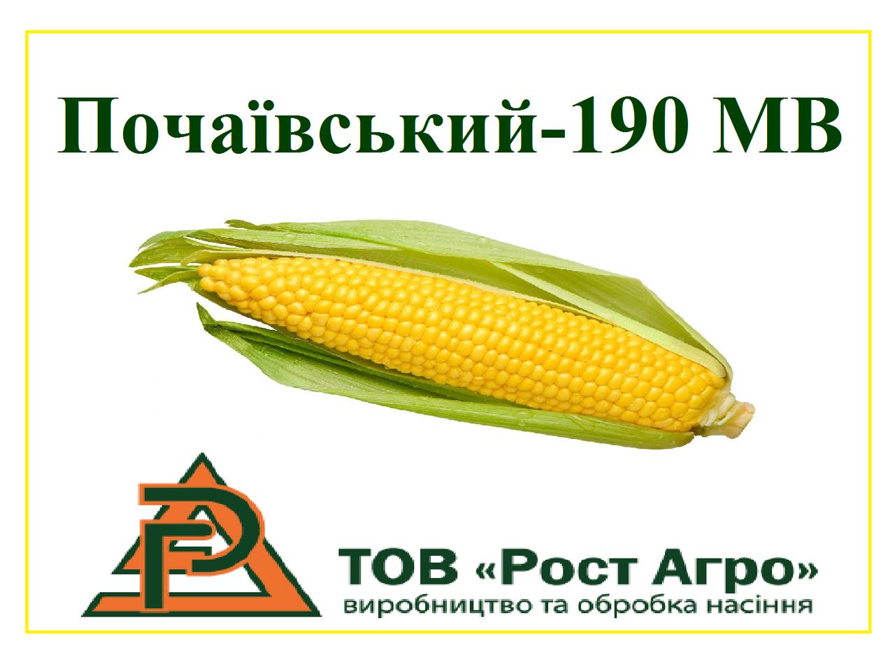 КУКУРУЗА ПОЧАЕВСКИЙ - 190 МВ (ФАО 190), 1 поколение, 2018 г.у. (Рост Агро)