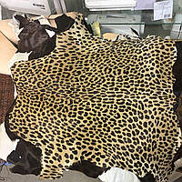 Кожа пони леопард